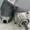 Гидромотор 310.2.28.00.03 Аналоги (210.16.11.01Г) ( ГММ 3.28/00.00 ) #1384535