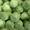Продается капуста высокого качества,  урожай 2016 г.  #1443218